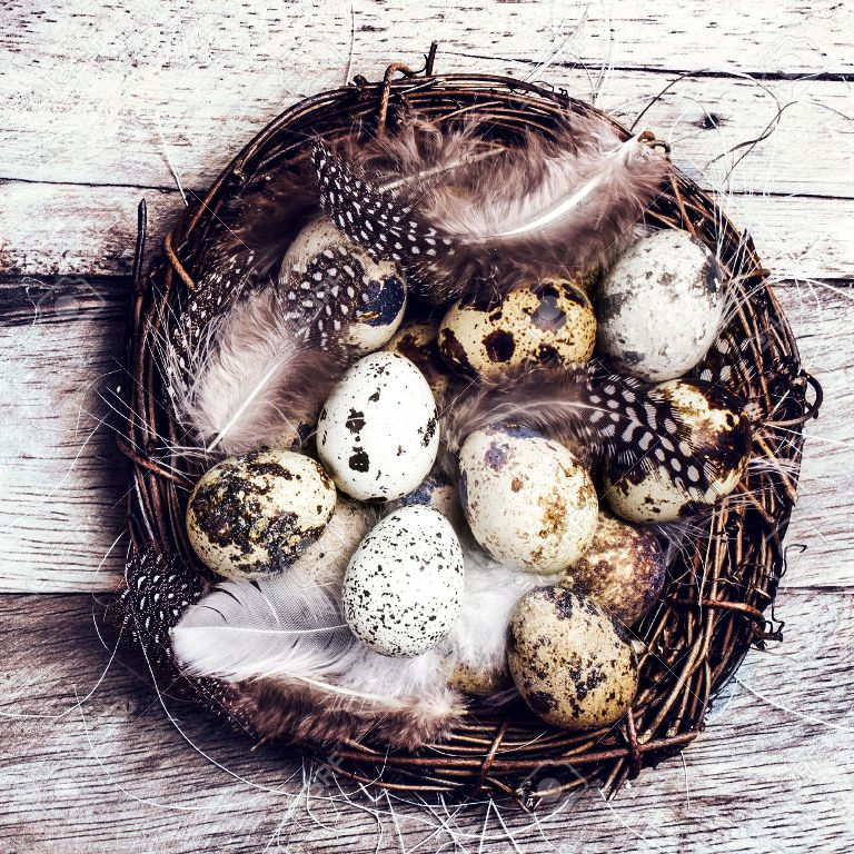 Easter basket with Easter Eggs on wooden background. Quail easter eggs in a nest on  wooden table with copyspace.