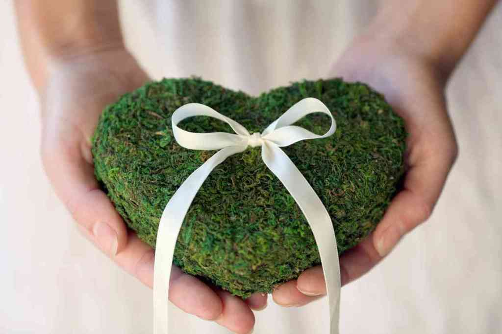 memorable-moss-wedding-decor-for-ceremony-reception-ring-bearer-pillow.original